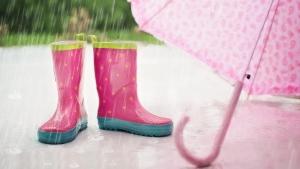 Fuori gli ombrelli per il prossimo fine settimana