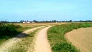 Terreni di Pernate, ancora un nulla di fatto